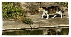 Beach Towel featuring the painting Waterfront Walking Kitten by Odon Czintos