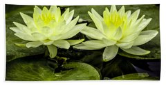 Waterlily Duet Beach Towel