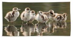 We Are Family - Seven Egytean Goslings In A Row Beach Towel