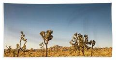 We Love This Sunset Beach Sheet