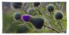 Weed Flower 1 0f 5 Beach Towel by Tina M Wenger