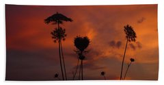 Weeds In The Sunrise Beach Sheet by Kathryn Meyer