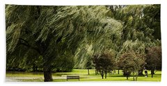 Weeping Willow Trees On Windy Day Beach Towel by Carol F Austin
