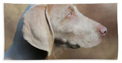 Weimaraner Adult - Painting Beach Sheet