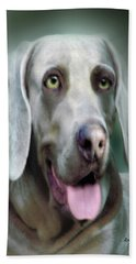 Weimaraner Rusty  Portrait  Beach Sheet