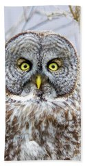 Well Hello - Great Gray Owl Beach Towel