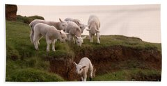Welsh Lambs Beach Towel