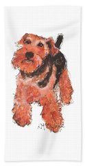 Welsh Terrier Or Schnauzer Watercolor Painting By Kmcelwaine Beach Towel