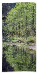 West Fork Reflection 8065-101817-1 Beach Towel