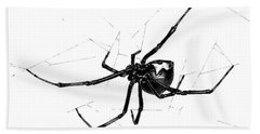 Western Black Widow Beach Towel
