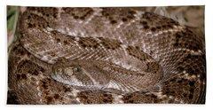 Western Diamondback Rattlesnake Beach Towel