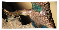 Western Fence Lizard Beach Towel