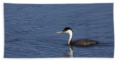 Western Grebe In Late Afternoon Light Beach Towel
