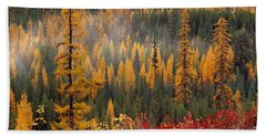 Western Larch Forest Autumn Beach Sheet