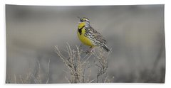 Western Meadowlark Beach Towel
