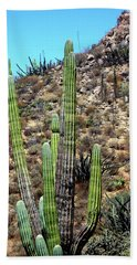 Western Mexican Cactus Tree Beach Sheet