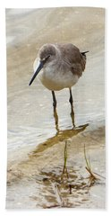Beach Towel featuring the photograph Western Sandpiper by Rosalie Scanlon