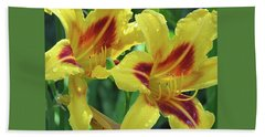 Wet And Wild Daylily Duo Beach Towel