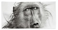 Wet Baboon Portrait Beach Towel