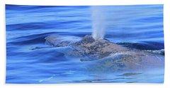 Wet Breath Beach Sheet by Shoal Hollingsworth
