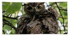 Wet Owl Beach Towel