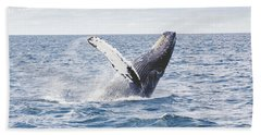 Whale Tail Beach Towel by Happy Home Artistry