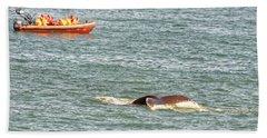 Whale Tail Beach Sheet