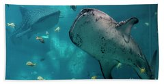 Whale-sharks Beach Towel by Barbara Bowen