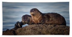 Beach Towel featuring the photograph Whats For Dinner by Randy Hall