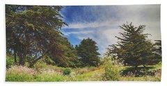 Where Fairies Play Beach Sheet by Laurie Search