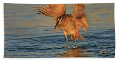 Whimbrel Colors Beach Sheet