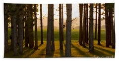 Whispers Of The Trees Beach Towel