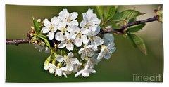 White Apple Blossoms Beach Sheet
