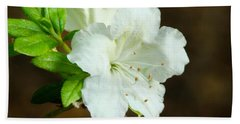 White Azalea  Beach Towel