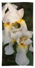Beach Towel featuring the photograph Two White Bearded Iris At Dusk by Sheila Brown
