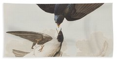 White-bellied Swallow Beach Towel by John James Audubon