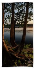 White Birch And Kennebec River At Sunset, South Gardiner, Maine  Beach Sheet