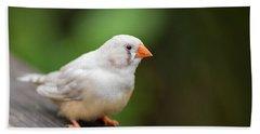 White Bird Standing On Deck Beach Sheet