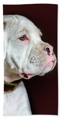 White Boxer Portrait Beach Towel by Dawn Romine