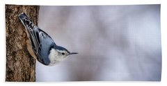 Beach Towel featuring the photograph White-breasted Nuthatch by Rikk Flohr
