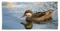 White-cheeked Pintail Beach Towel by Eunice Gibb