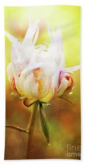 White Chinese Peony Laden With Raindrops Beach Towel