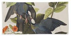 White Crowned Pigeon Beach Towel by John James Audubon