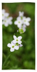 White Cuckoo Flowers Beach Towel