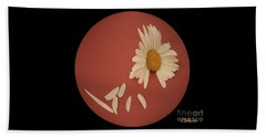 Encapsulated Daisy With Dropping Petals Beach Towel