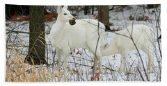 White Deer With Squash 2 Beach Sheet