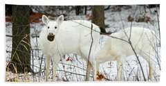 White Deer With Squash 3 Beach Sheet