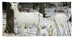 White Deer With Squash 4 Beach Towel by Brook Burling
