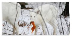 White Deer With Squash 5 Beach Sheet