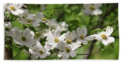 White Dogwood Blossoms Beach Towel by Trina Ansel